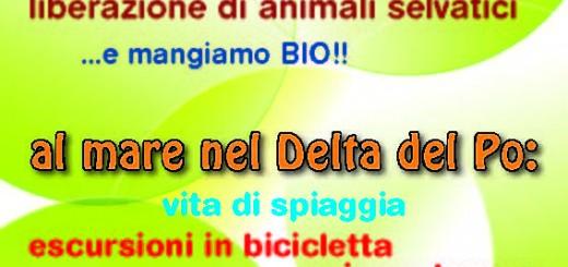volantino_cea_2014_pagina_1