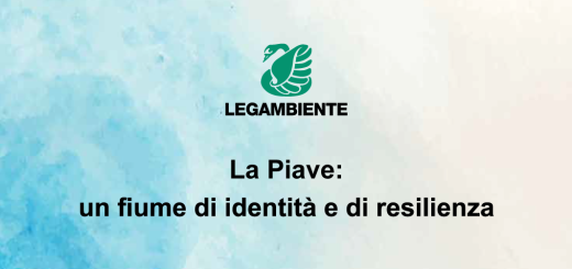 cover_piave